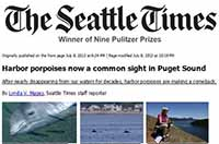 Seattle Times Harbor Porpoise story