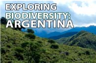 Expeditions in South America